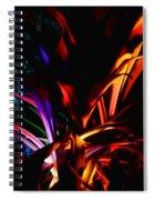 Roy G Biv Spiral Notebook