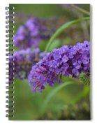 Royal Butterfly Bush Spiral Notebook