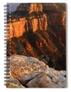 Royal Meditation Spiral Notebook