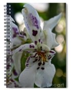 Royal Orchid  Spiral Notebook