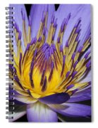 Royal Purple Water Lily #5 Spiral Notebook
