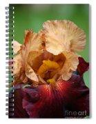 Royal Red Carpet Spiral Notebook