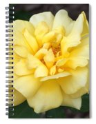 Royal Yellow Delight Rose... Spiral Notebook