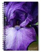 Royale Purple Petals Spiral Notebook