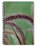 Ruby Fingers Spiral Notebook