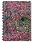 Ruby Lattice Spiral Notebook