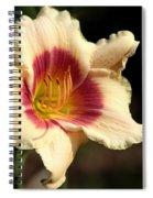 Ruby Peach Spiral Notebook