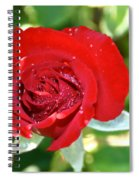 Ruby Rose Diamond Dust Spiral Notebook