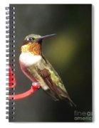 Ruby Throated Hummingbird 2 Spiral Notebook