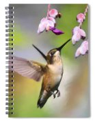 Ruby-throated Hummingbird - Digital Art Spiral Notebook