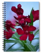 Ruby Tuesday Spiral Notebook