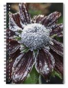 Rudbeckia First Frost Spiral Notebook