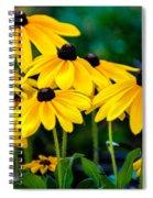 Rudbeckia Hirta Spiral Notebook