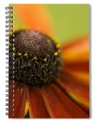 Rudbeckia  Spiral Notebook