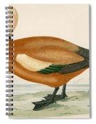 Ruddy Sheldrake Spiral Notebook