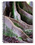 Rudraksha 2 Spiral Notebook