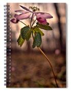Rue Anemone Spiral Notebook
