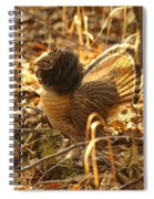 Ruffed Grouse Display Spiral Notebook