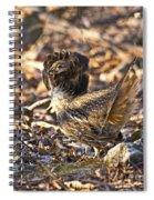 Ruffed Grouse Ruff Spiral Notebook