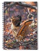 Ruffed Grouse Side Strut Spiral Notebook