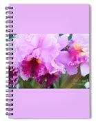 Ruffled Orchids Spiral Notebook