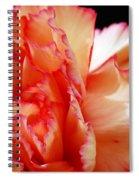 Ruffled Spiral Notebook