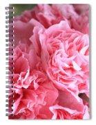 Ruffly Pink Hollyhock Spiral Notebook