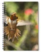 Rufous Spiral Notebook