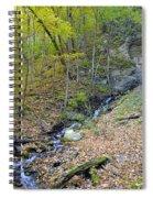 Rugged Beauty Spiral Notebook