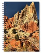 Rugged Rainbow Spiral Notebook