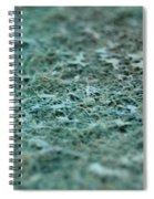 Rugous Texture  Spiral Notebook