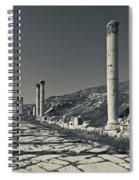 Ruins Of Roman-era Columns Spiral Notebook