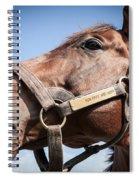 Run Away And Hide Spiral Notebook