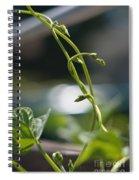 Runaway Vine Spiral Notebook