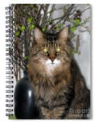 Runcius- Palm Sunday Kitty Spiral Notebook