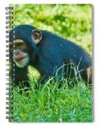 Running Chimp Spiral Notebook