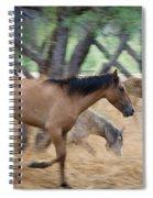 Running Free  Spiral Notebook