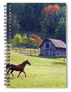Running Horse And Old Barn Spiral Notebook
