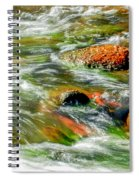 Running River Spiral Notebook