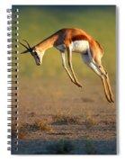 Running Springbok Jumping High Spiral Notebook