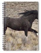Running Wild 2 Spiral Notebook