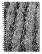 Rural America Black And White Spiral Notebook