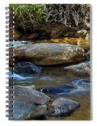 Rushing Mountain Stream Spiral Notebook