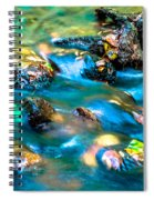 Rushing Water Over Fall Leaves Spiral Notebook