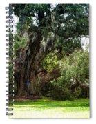 Ruskin Oak - Ocean Springs Spiral Notebook