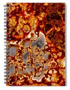 Rust-coloured Quartz Spiral Notebook