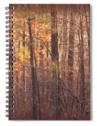 Rustic Winter Glow Spiral Notebook