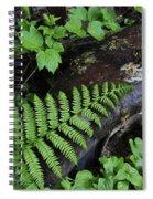 Rusting Spiral Notebook