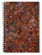 Rusty Spiral Notebook