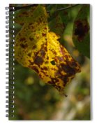 Rusty Leaf Spiral Notebook